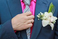 The groom. Close up groom in a blue tuxedo Stock Images