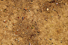 Close-up of the ground Royalty Free Stock Images