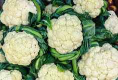 Close up group of cauliflower sale in market. Close up group of fresh cauliflower sale in market Royalty Free Stock Photography