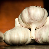 close up group of fresh garlic Royalty Free Stock Image