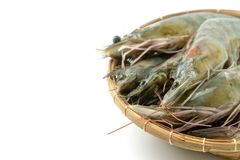Close up group of fresh raw pacific white shrimp in bamboo bowl on white background Isolated background stock photo