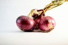 Close up group of three red onions on white background stock photos