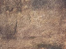 Close up grunge cement wall background. And old texture Royalty Free Stock Images