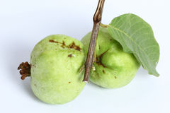 Close up Guava Stock Images