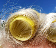 Close up from Hair curlers Stock Image