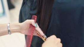 Close up of hairdresser combing woman wet hair and cutting hair with scissors