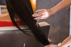 Close up hairdresser cutting clients hair with scissors. At beauty salon stock photography