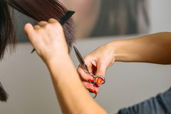 Close up of hairdressers hands shearing long black hair with scissors and comb. Stock Photography