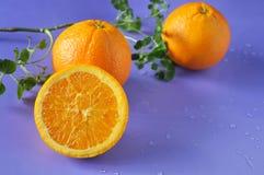 Close up Half of Fresh Navel Orange stock images