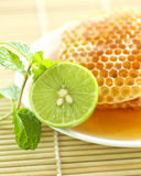 Close up half a lemon with sweet honeycombs and mint leaf Stock Images