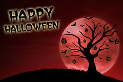 Close-up halloween card with pumpkin tree Royalty Free Stock Image