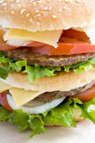 Close up hamburger Royalty Free Stock Photo