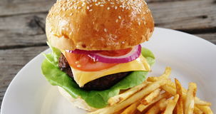 Hamburger and french fries in plate stock footage