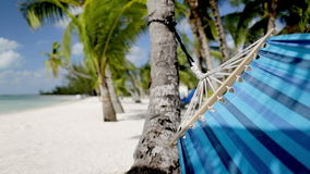 Close up of hammock swinging on tropical beach. Vacation, seaside, summer and leisure concept - close up of blue hammock swinging on tropical beach stock video footage