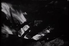 Close-up of hand adding twigs to fire stock video footage