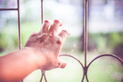 Close up hand beg for freedom at window baluster.  royalty free stock image