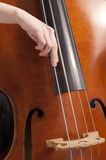 Close-up on hand on double bass Royalty Free Stock Images