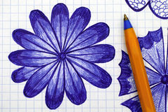 Close-up of hand drawn daisy flower on sheet of checkered paper Stock Photos