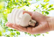 Close up of hand holding energy saving lightbulb Royalty Free Stock Photos