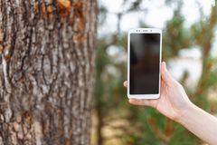 Close-up of hand holding phone on blurred, place for text royalty free stock image