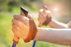 Close up of a hand holding a walking pole Royalty Free Stock Image