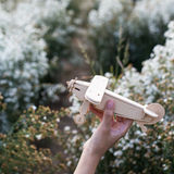 close-up of Hand holding a wooden airplane plane on white flower Stock Image