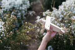 close-up of Hand holding a wooden airplane plane on white flower Stock Photo