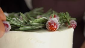 Close-up hand puts on the cake sugar cranberries. Close-up hand of confectioner decorates the cake with sugar cranberries and rosemary stock video footage