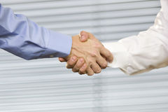 Close up of Hand Shake Royalty Free Stock Photography