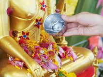 Close up hand watering to golden buddha statue. On Songkran day or special buddism holidays in Thailand stock images