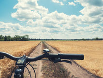 Close-up of handlebar mountain bike on the path of the yellow field in the countryside. Close-up of handlebar mountain bike on the path of the yellow field in Stock Images