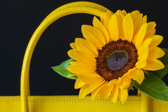 Close-up handles of bright handbag from genuine leather, decorated flower, sunflower. Concept of shopping, manufacturing. Close-up handles of bright handbag from Royalty Free Stock Photo