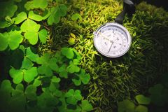 Close up handmade wooden compass, tree shadows on green nature grass ground. holiday adventure in forest. Compass royalty free stock photos