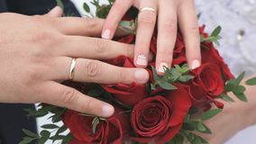 Close-up of hands of newlyweds stock video footage