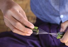 Close up of hands of burmese man making silk thread from lotus plant stock photography
