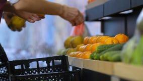 Shop assistants arranging fruits storage stands stock footage