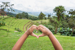 Close up hands with heart sign on top mountain view Stock Images