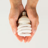 Close up of hands holding energy saving lightbulb Stock Photography