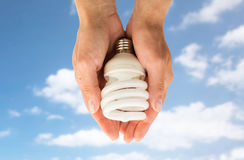 Close up of hands holding energy saving lightbulb Royalty Free Stock Photography