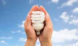 Close up of hands holding energy saving lightbulb Stock Images