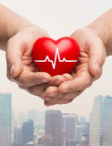 Close up of hands holding heart with cardiogram Stock Image