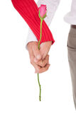 Close up of hands holding rose Royalty Free Stock Images
