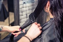 Close up hands of professional hairdresser combing wet hair of y. Oung brunette women while she is sitting in armchair in beauty salon Royalty Free Stock Images