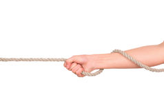 Close up of hands pulling a rope. On white background with clipping path stock photos