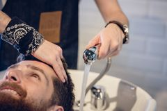 Close-up of the hands of a skilled hairdresser giving a hair wash. Close-up of the hands of a skilled male hairdresser, giving a hair wash to a happy customer Royalty Free Stock Photo