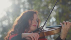 Close-up of the hands of a violinist in the sun. Woman violinist stock footage