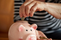 Close up hands of woman putting coin into piggy bank Royalty Free Stock Image
