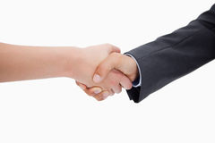 Close up of a handshake Royalty Free Stock Image