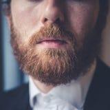 Close up handsome beard elegant man Royalty Free Stock Images