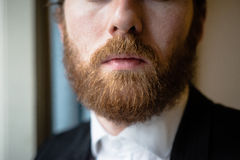 Close up handsome beard elegant man Stock Image